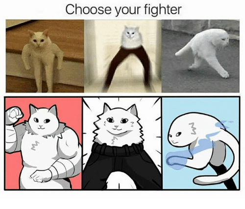 choose-your-fighter-16279438